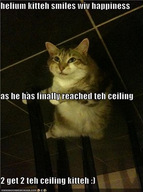 helium kitteh smiles wiv happiness as he has finally reached teh ceiling 2 get 2 teh ceiling kitteh :)
