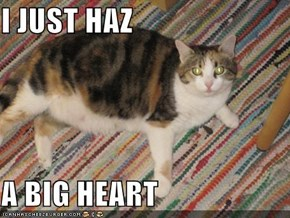 I JUST HAZ  A BIG HEART