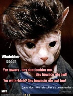 Whutebber  Dood!