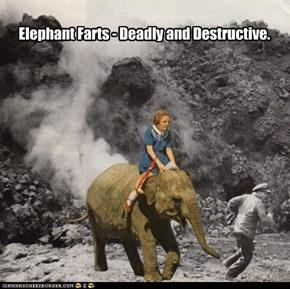 Elephant Farts
