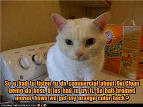 So  u  had  tu  listen  tu  da  commercial  about  Oxi Clean being  da  best.  U  jus  had  tu  try  it.  So  half-brained moron,  hows  we  get  my  orange  color  back ?
