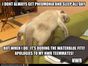 I DONT ALWAYS GET PNEUMONIA AND SLEEP ALL DAY