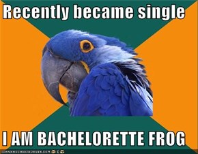 Recently became single  I AM BACHELORETTE FROG