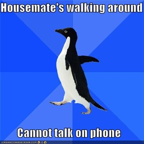 Housemate's walking around  Cannot talk on phone