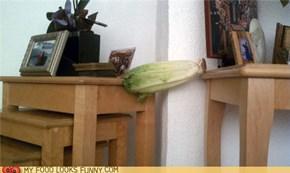 Veggie Planking