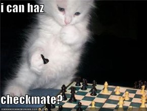 i can haz   checkmate?