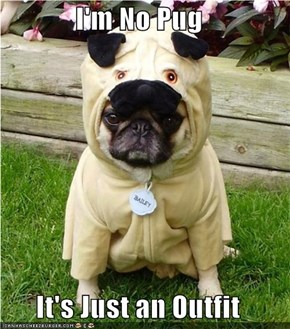 I'm No Pug  It's Just an Outfit