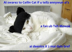 Ai swarez to Ceilin Cat if u tellz ennywun ai'z a fan ub Teh Mowse ai deenize it 2 mai dyin bref