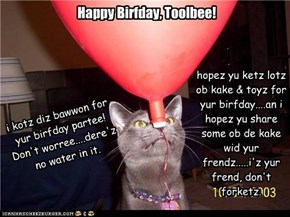 Happy Birfday, Toolbee!!