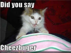 Did you say   Cheezbuger