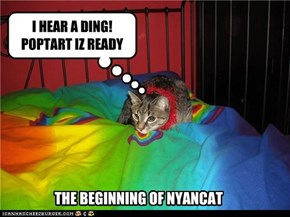 THE BEGINNING OF NYANCAT