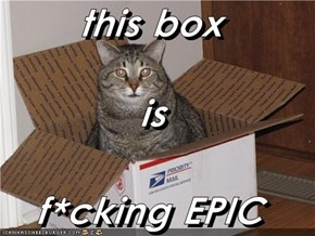 this box is f*cking EPIC
