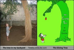 "The Tree in My Backyard Totally Looks Like ""The Giving Tree"" By Shel Silverstein"