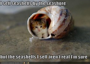 I sell seashells by the seashore.  but the seashells I sell aren't real I'm sure