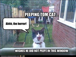 PEEPING TOM CAT...