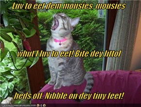 Luv to eet dem mousies, mousies whut I luv to eet! Bite dey littol heds off, Nibble on dey tiny feet!