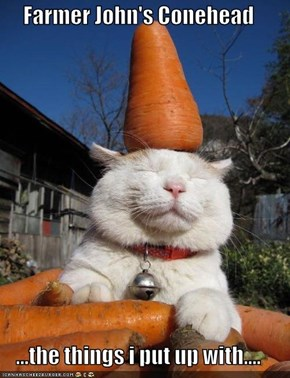 Farmer John's Conehead  ...the things i put up with....