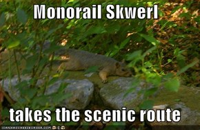 Monorail Skwerl  takes the scenic route