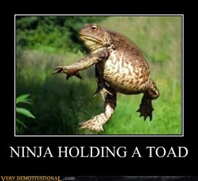 NINJA HOLDING A TOAD