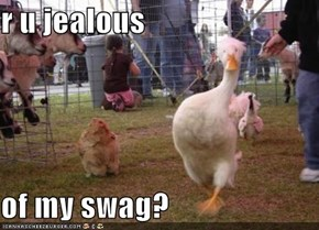 r u jealous  of my swag?