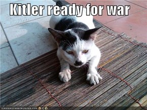 Kitler ready for war