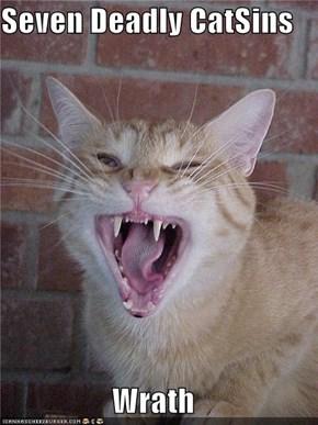 Seven Deadly CatSins  Wrath