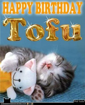 Happy Birthday Tofu . . . . . . . . . . . . . . . . . . . . . . . . . . . . . . . . . .