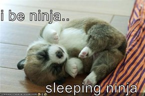 i be ninja..   sleeping ninja