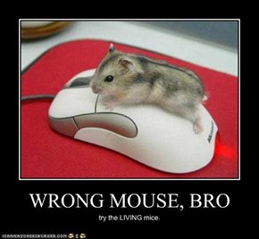 WRONG MOUSE, BRO