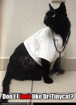 Don't I look like Dr. Tinycat?