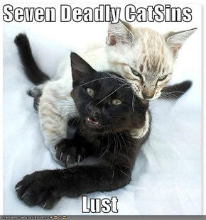 Seven Deadly CatSins  Lust