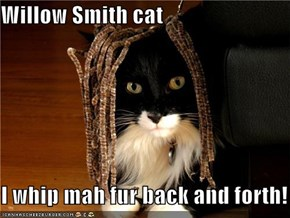 Willow Smith cat  I whip mah fur back and forth!