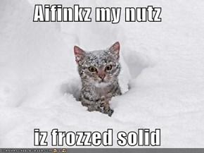 Aifinkz my nutz  iz frozzed solid