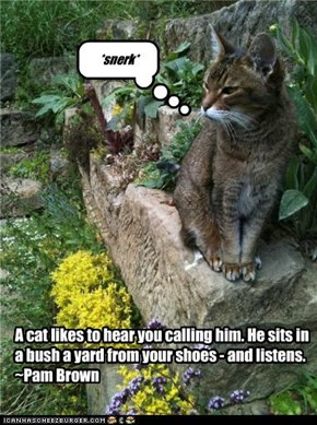 A cat likes to hear you calling him. He sits in a bush a yard from your shoes - and listens.~Pam Brown