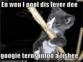 En wen I pool dis lever dee  googie terns intoo a fishee