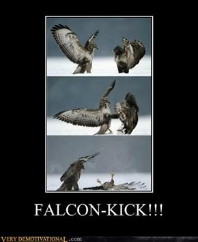 FALCON-KICK!!!