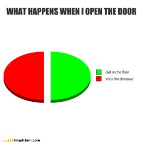 WHAT HAPPENS WHEN I OPEN THE DOOR