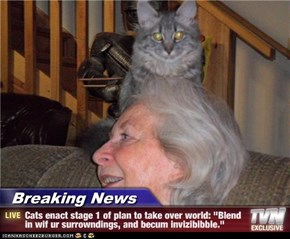 "Breaking News - Cats enact stage 1 of plan to take over world: ""Blend in wif ur surrowndings, and becum invizibibble."""