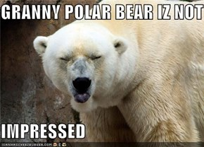 GRANNY POLAR BEAR IZ NOT  IMPRESSED