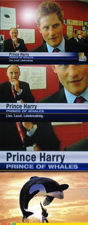 Free Harry