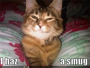 I haz                        a smug