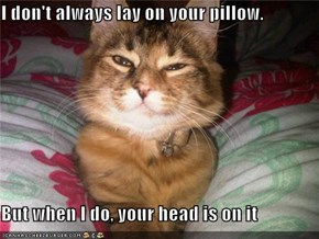 I don't always lay on your pillow.  But when I do, your head is on it