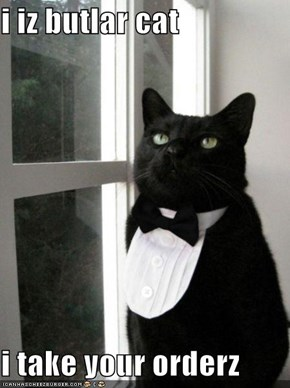 i iz butlar cat  i take your orderz