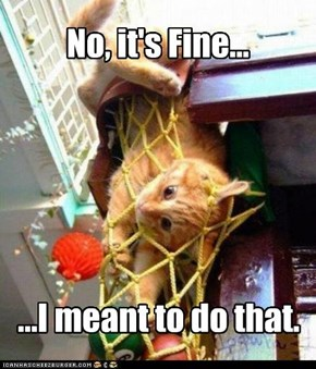 No, it's Fine...