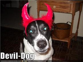 Devil-Dog