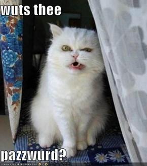 wuts thee   pazzwurd?