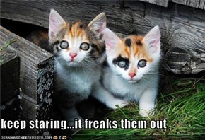 keep staring...it freaks them out