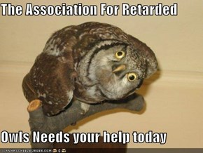 Call 1-800-OWL-TARD Now!