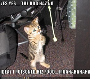 YES YES.... THE DOG HAZ NO  IDEAZ I POISONED HIZ FOOD... MUAHAHAHAHA