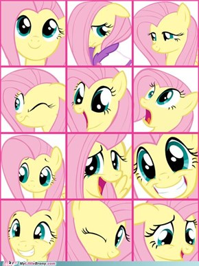 many pony expressions: fluttershy